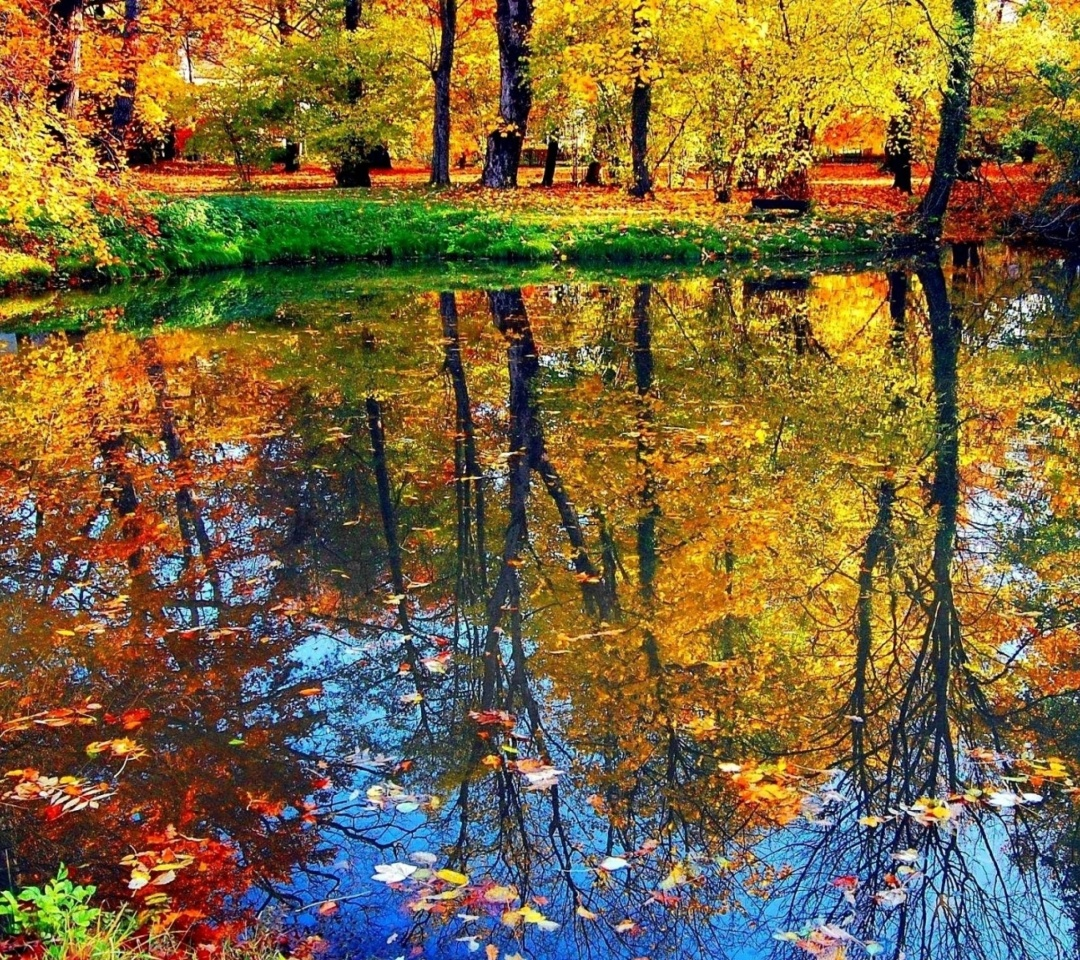 Screenshot №1 pro téma Autumn pond and leaves 1080x960