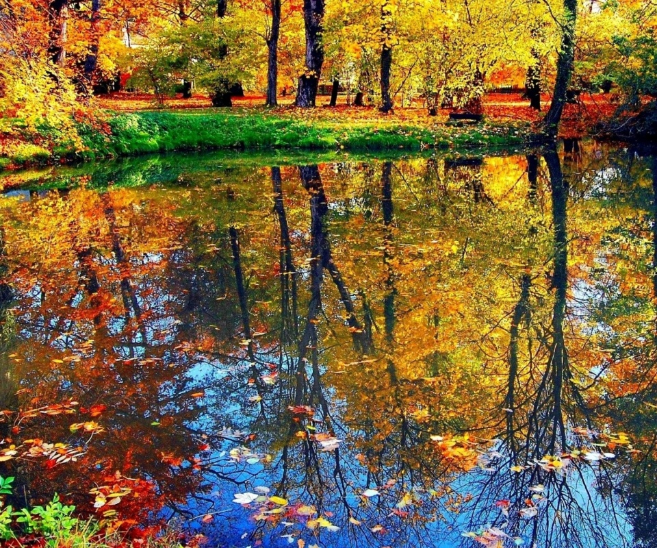 Sfondi Autumn pond and leaves 960x800