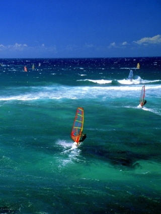 Windsurfers Picture for HTC Titan