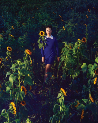 Girl In Blue Dress In Sunflower Field - Fondos de pantalla gratis para 320x480