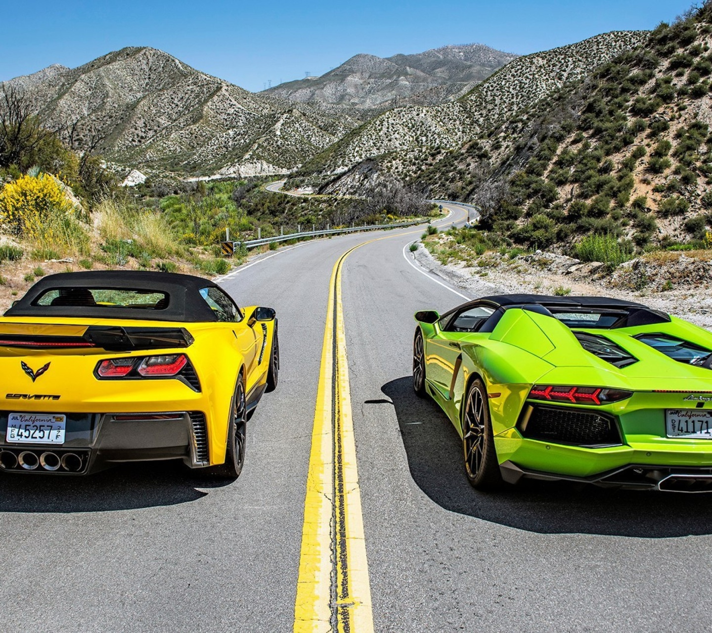 Chevrolet Corvette Stingray vs Lamborghini Aventador wallpaper 1440x1280