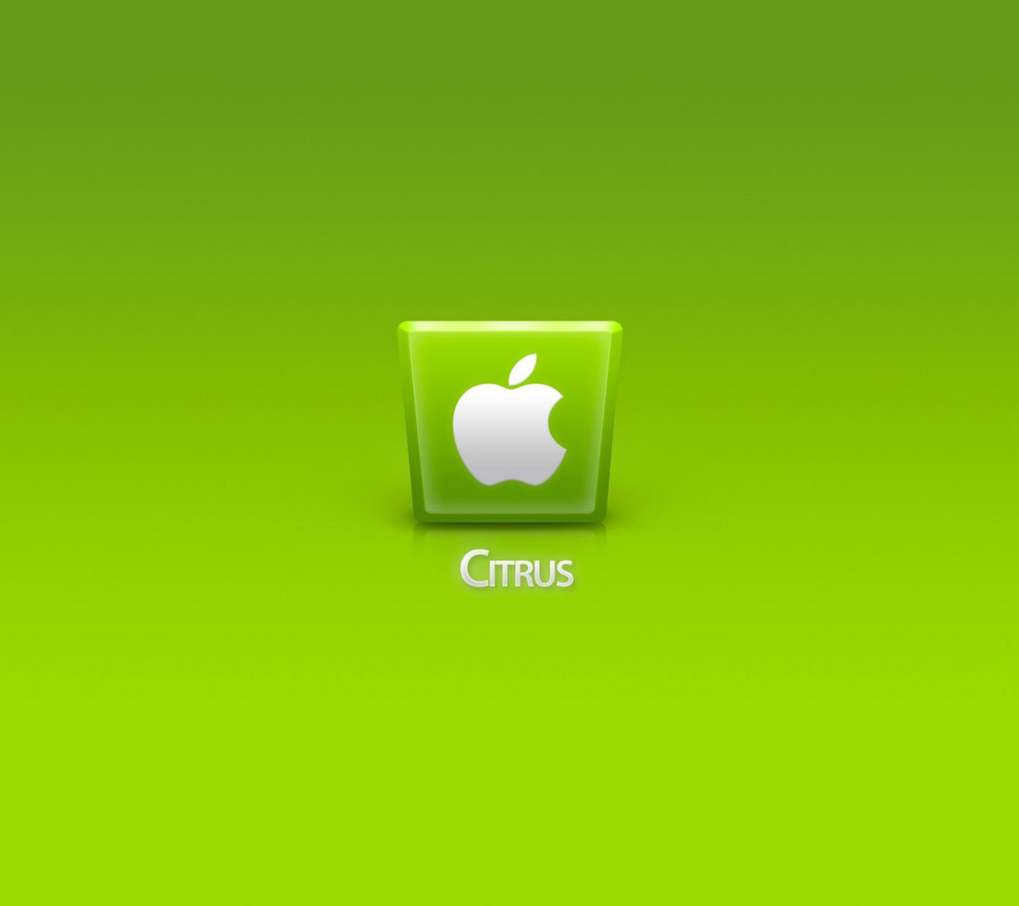 Screenshot №1 pro téma Apple Citrus 1440x1280