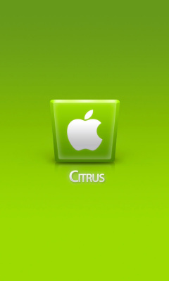 Screenshot №1 pro téma Apple Citrus 240x400