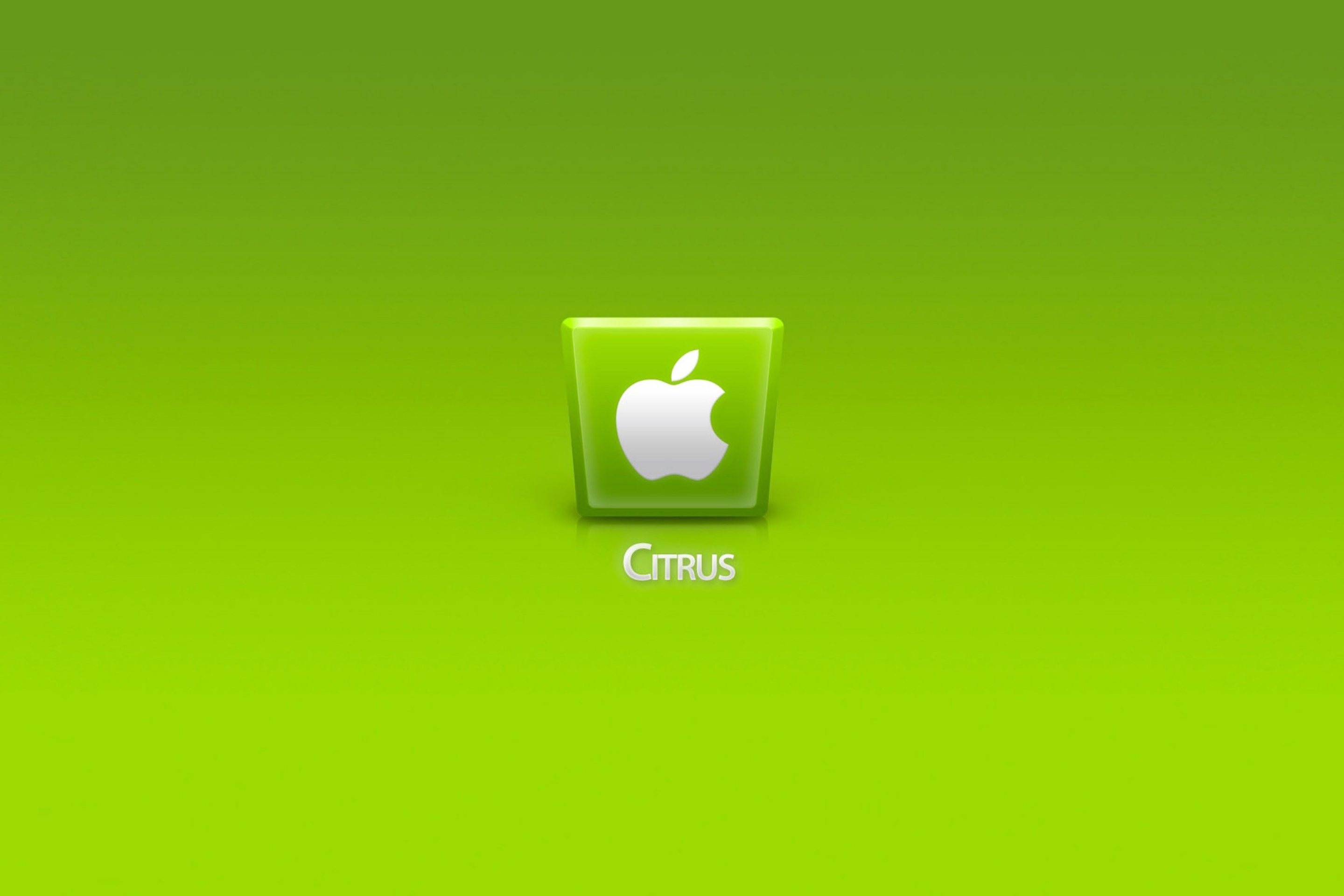 Fondo de pantalla Apple Citrus 2880x1920