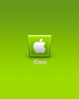 Free Apple Citrus Picture for Nokia Asha 310