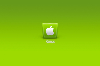 Apple Citrus Background for LG Optimus U