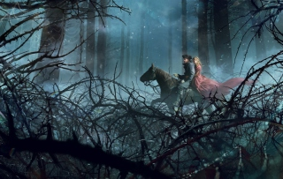 Kostenloses Night Horse Ride Wallpaper für Android, iPhone und iPad