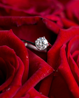 Diamond Ring And Roses papel de parede para celular para 640x1136