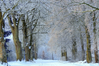 Winter Alley Background for Android, iPhone and iPad