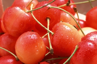 Free Cherries Picture for 1600x1280