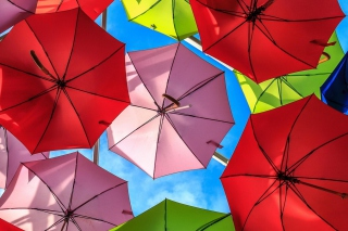 Free Colorful Umbrellas Picture for Android, iPhone and iPad