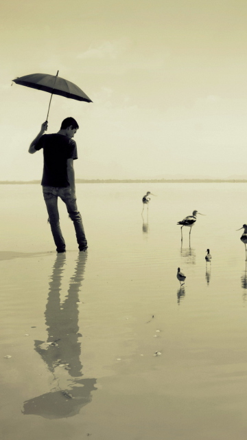 Screenshot №1 pro téma Guy With Umbrella And Bird Lake 360x640