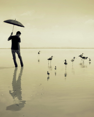Guy With Umbrella And Bird Lake sfondi gratuiti per iPhone 4S