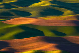 Brown and Green Hills Wallpaper for Samsung Galaxy Ace 3