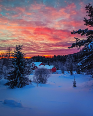 Amazing Winter Sunset Landscape sfondi gratuiti per Nokia Lumia 925