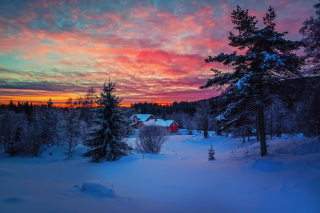 Amazing Winter Sunset Landscape Background for Android, iPhone and iPad