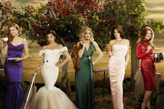 Free Desperate Housewives Picture for Android, iPhone and iPad