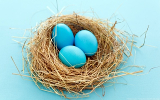 Blue Eggs Background for Android, iPhone and iPad