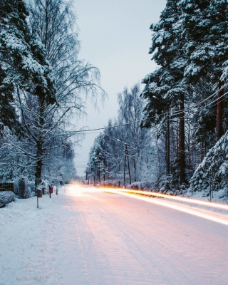 Snowy forest road Background for 240x320