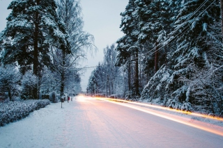 Snowy forest road Background for Android, iPhone and iPad