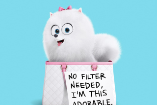Gidget Secret Life of Pets Picture for Android, iPhone and iPad