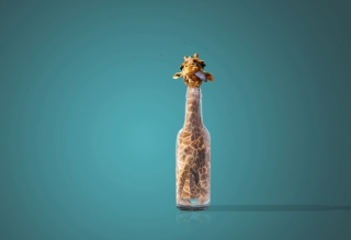Giraffe In Bottle Wallpaper for Android, iPhone and iPad