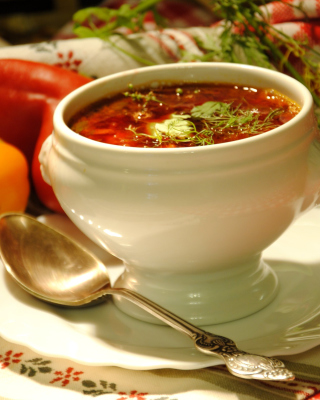 Free Ukrainian Red Borscht Soup Picture for Nokia Asha 306