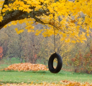 Tire Swing Wallpaper for iPad 2