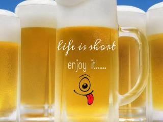 Life is short - enjoy it para Nokia X2-01