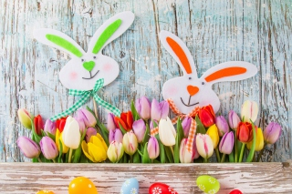 Easter Tulips and Hares Background for Android, iPhone and iPad