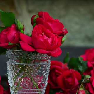Red roses in a retro vase sfondi gratuiti per iPad Air