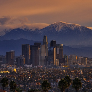 Los Angeles, California Panorama Background for iPad mini