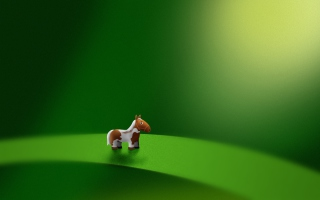 Microhorse Background for LG Optimus M