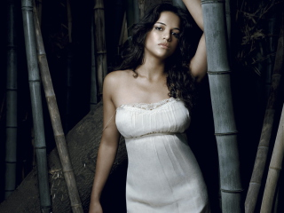 Free Gorgeous Michelle Rodriguez Picture for Android, iPhone and iPad