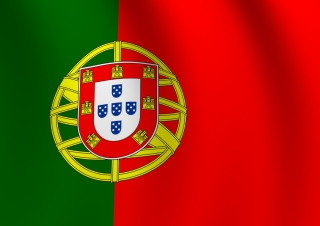 Portugal Flag Background for HTC Desire HD