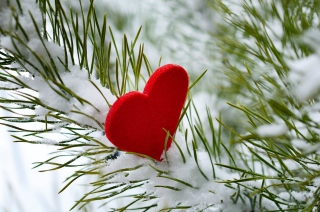 Last Christmas I Gave You My Heart - Fondos de pantalla gratis