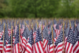 Usa Memorial Day Picture for Android, iPhone and iPad