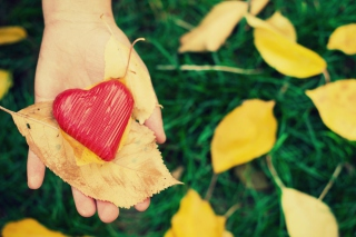 I Heart Autumn Picture for Android, iPhone and iPad