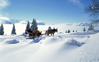 Winter Snow And Sleigh With Horses Background for Android, iPhone and iPad