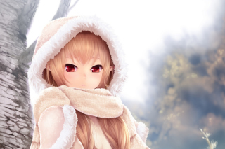 Winter Anime Girl Wallpaper for HTC Desire HD