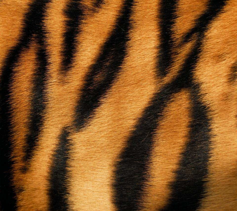 Tiger para Sony Ericsson XPERIA PLAY