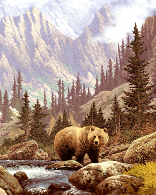 Brown Bear Painting Wallpaper for Nokia Asha 311