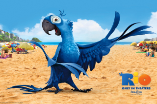 Rio Character Blu Background for HTC Wildfire
