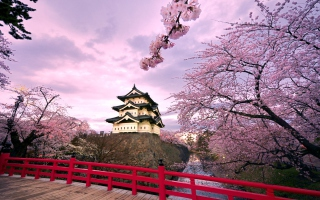 Hirosaki Castle Japan Picture for Android, iPhone and iPad
