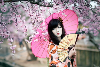 Japanese Girl Under Sakura Tree Picture for Android, iPhone and iPad