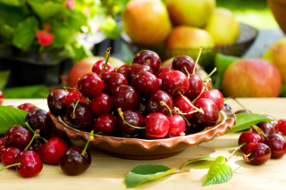 Free Wild Cherry Picture for Android, iPhone and iPad