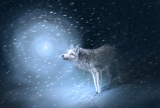 Wolf And Winter Painting - Obrázkek zdarma pro Widescreen Desktop PC 1680x1050