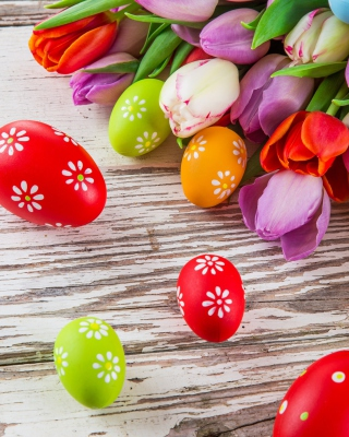 Easter Tulips and Colorful Eggs - Obrázkek zdarma pro 240x432