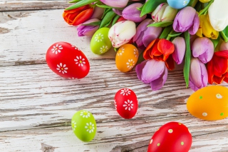 Easter Tulips and Colorful Eggs Background for Android, iPhone and iPad