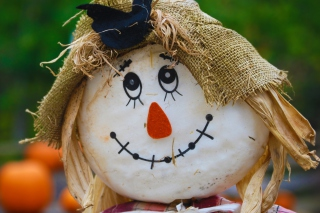 Scarecrow Picture for Android, iPhone and iPad